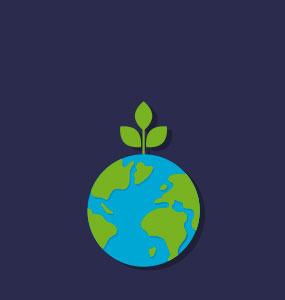 descubriendo la ecología